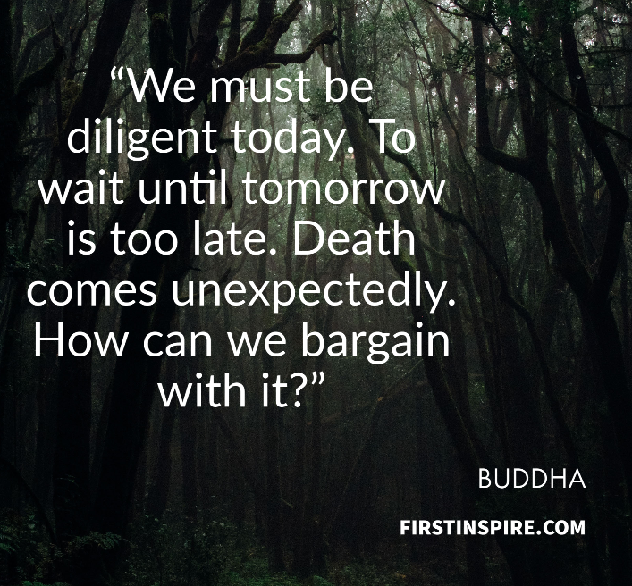 inspiration quotes from buddha, motivational quotes for procrastination